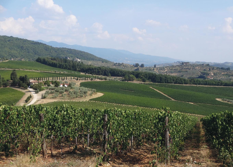 700 lat winiarskiej historii Toskanii
