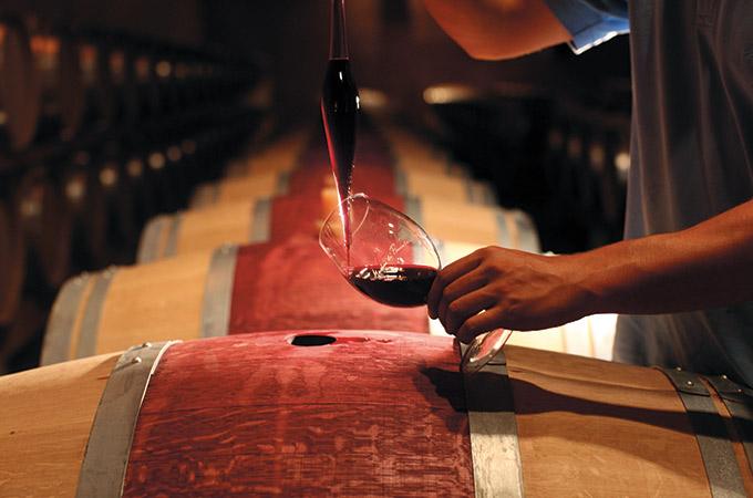 wino Frescobaldi